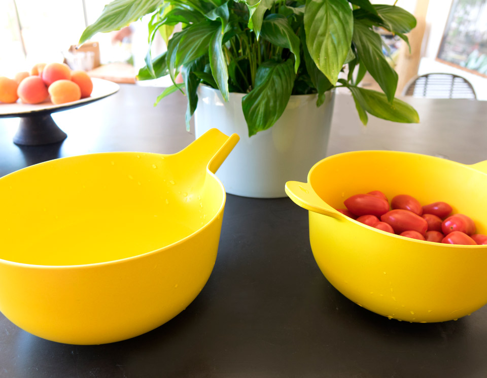 2-handybowl_plant_lemon